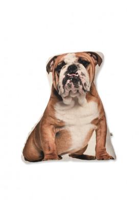 almofada-estampa-cachorro-bulldog-ingles-usenatureza