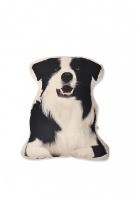 Almofada Border Collie