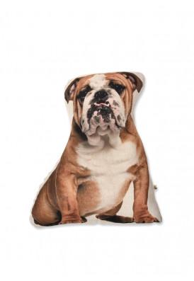 Almofada Bulldog Inglês