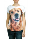 camiseta-cachorro-raca-golden-retriever-usenatureza