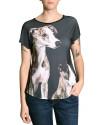 camiseta-desenho-cachorro-corrida-whippet-usenatureza