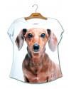 camiseta-de-cachorro-linguicinha