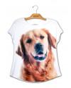 camiseta-estampa-cachorro-golden-retriever-caramelo-usenatureza