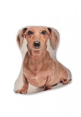 almofada-dachshund-usenatureza